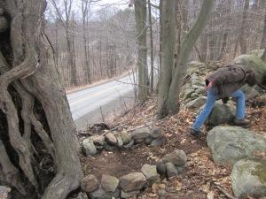 Woods Rock Garden