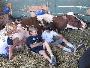 County Fair 2013 203