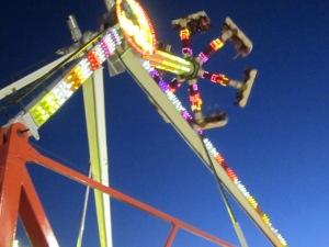 County Fair 2013 380