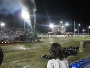 County Fair 2013 457