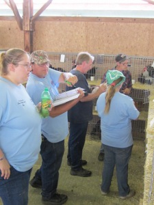 county fair and cleanout 2013 616