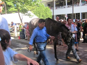Travers Day 2013 019