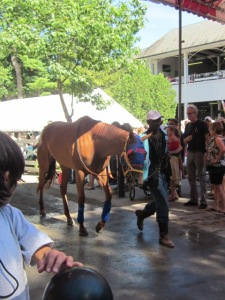 Travers Day 2013 020