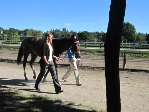 Travers Day 2013 072
