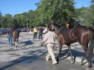 Travers Day 2013 097