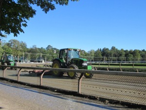 Travers Day 2013 100
